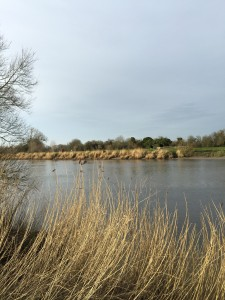 The River Severn by The Glamping Orchard