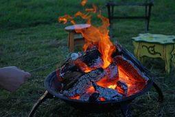 Fire-toasting-marshmellows